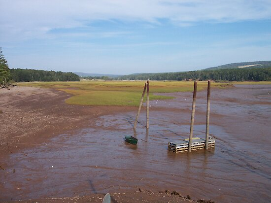 Bay of Fundy Tidal Flats by Geoffrey
