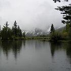 June Lake by Tijen
