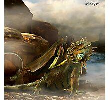 puff the magic dragon Photographic Print