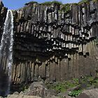 Svartifoss (black fall) in Skaftafell national park in Iceland by Philippe Rikir