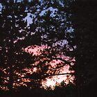 An Awesome Summer Sunset by mwmclaren