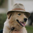Jacksons Favorite Hat by Robert Woods