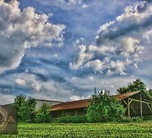 A Georgia Centennial Farm by Patricia Montgomery