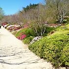 Japanese Gardens panorama by PhotosByG