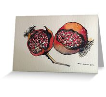 Pomegranate. Pen and wash 2012 Greeting Card