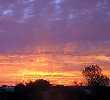 Sun Rise... by wahumom