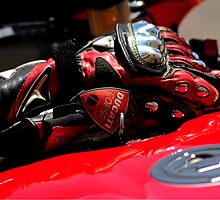 Racing Gloves by Gino Iori