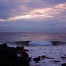 Of Sea and Sky by Jennifer Ellison