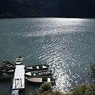 Boats on the lake by Moshe Cohen