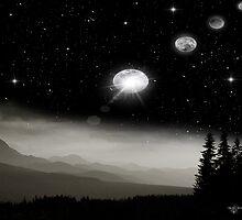 Night Sky by Spyder