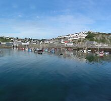 Mevagissey by Mary  Lane