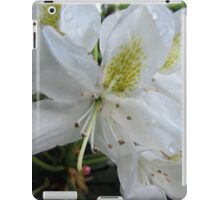 (2) Lillies White, Raindrop Wet  iPad Case/Skin
