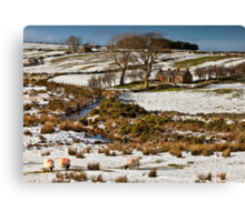 Little House On The Mournes Canvas Print