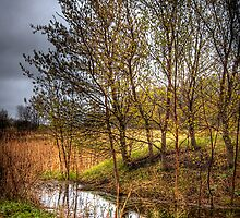 Up The Creek.. by raberry