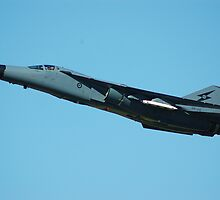 F-111 RAAF by zouchai