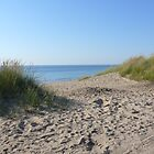 Beaches of Lake Michigan 2011 by Jellybean720