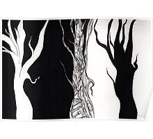 Black and white trees. Poster