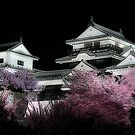 Matsuyama Castle by Garth  Helms
