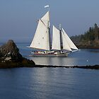 Schooner Lewis R French Passing Pulpit Rock by LifeInMaine