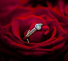 Rings and Roses by frccle