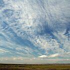 Sky by Karen Millard