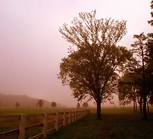 One Foggy Morning  by keleka656