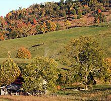 Autumn Barn by denise romano
