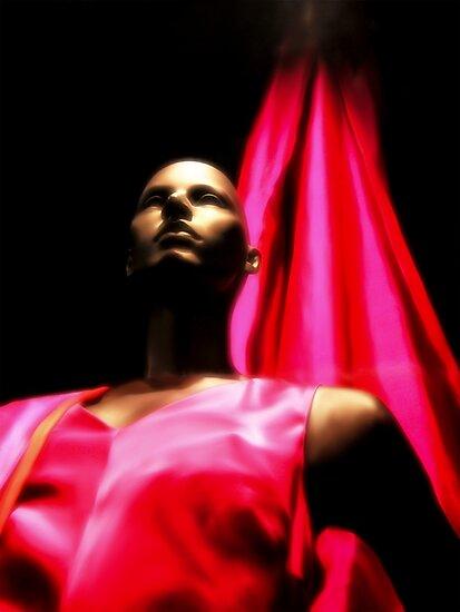 The lady in Red by Kurt  Tutschek