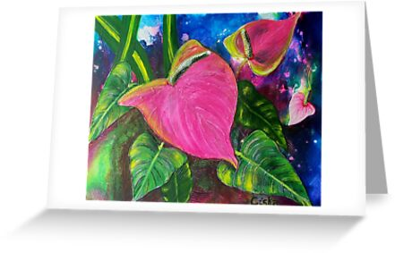 Anthurium dance for me by Ciska