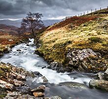 The Lake District Wilderness. by Heidi Stewart