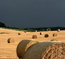 Hay Bales by Justine Devereux-Old