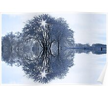 Winter Tree Symmetry Poster