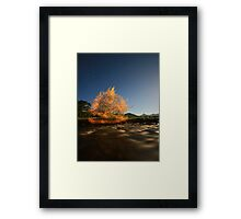 mad man out at night.. Framed Print