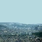 seoul flowing by Yuval Fogelson