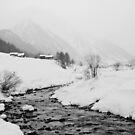 A snowy day by Steve plowman