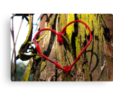In the Heart of the Forest - romantic trees and ribbon heart photograph Canvas Print