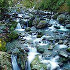 Bridal Veil Falls, Routeburn Track, New Zealand by aerdeyn