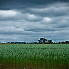 Farmland by Damiend