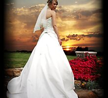 Sunset Bride by Kate Shaw