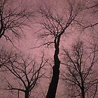 Trees Are Poems (Tree Silhouettes) by soaringanchor