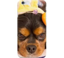 Cavalier King Charles Spaniel Easter Eggs iPhone Case/Skin