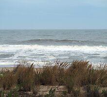 Ocean Storm by kimbarose