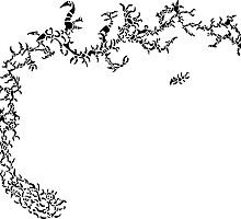 The Coral Reef (black and white version) by Adam Heffler / Foobix Design