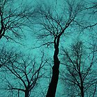Trees Are Poems II (Tree Silhouettes) by soaringanchor