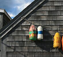 Hanging Buoys  by John  Goodman