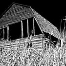 The Old B/W Barn by peaceofthenorth