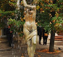 Budapest fountain by rononbjr