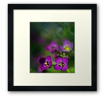 Dreaming in Color V. Framed Print