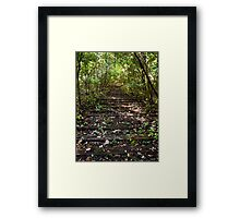 These tracks, how they move people still Framed Print