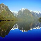 Doubtful Sound Reflections by chriso